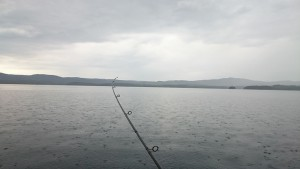 I went fishing in Norway. Got one!